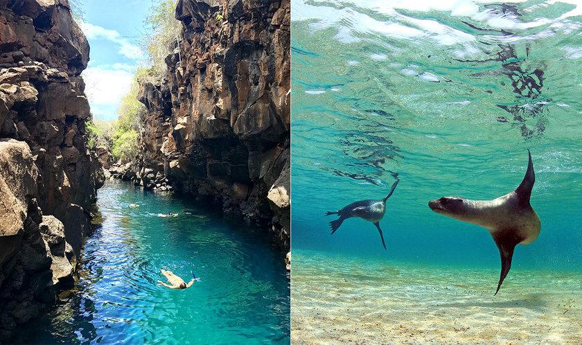 islas galapágos