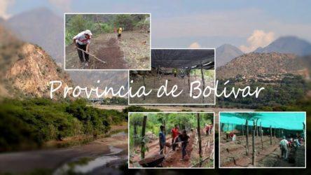 provincia bolivar
